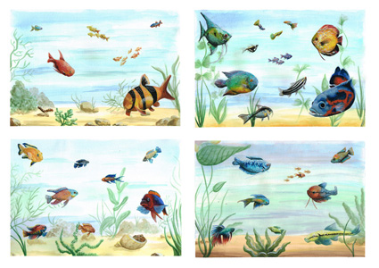 various habitat fish  paint illustration